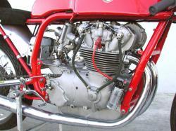 250-trialbero-2.jpg