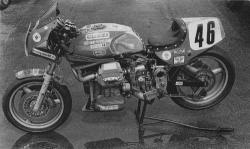 Dr john guzzi 1986