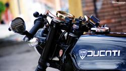 Ducati 350 gtv cafe racer by desmo bibu 8
